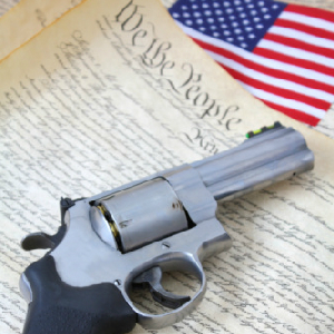 In NYC Second Amendment Rights Sell For $340