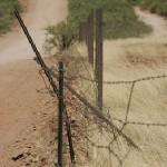 Vigilante Border Patrol?