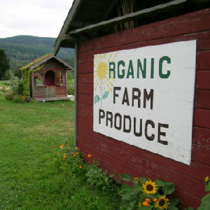 Federal Corruption Ruins Organic Food
