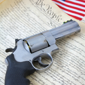 Four Stories About Stupid Gun Laws