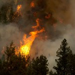 Wildfires Cause Emergency Evacuations