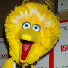 Big Bird Makes Appearance In New Obama Ad