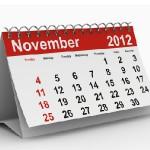 The Long November