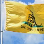 Center-Libertarian America