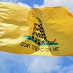 Libertarians Don't Identify With Tea Party Thanks To Social Issues