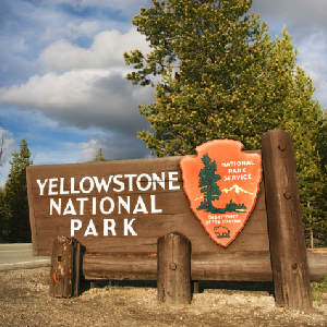'Gestapo Tactics' — Park Service Rounds Up, Detains Yellowstone Tourists At Gunpoint