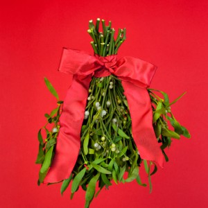 Humbug!: 11-Year-Old Told She Can't Sell Mistletoe In Busy Park, Told To Beg Instead