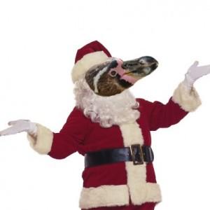 Since Santa Isn't Black, He Should Be A Flightless Bird