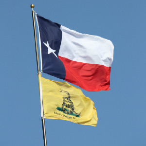 texas state and don't tread on me flags