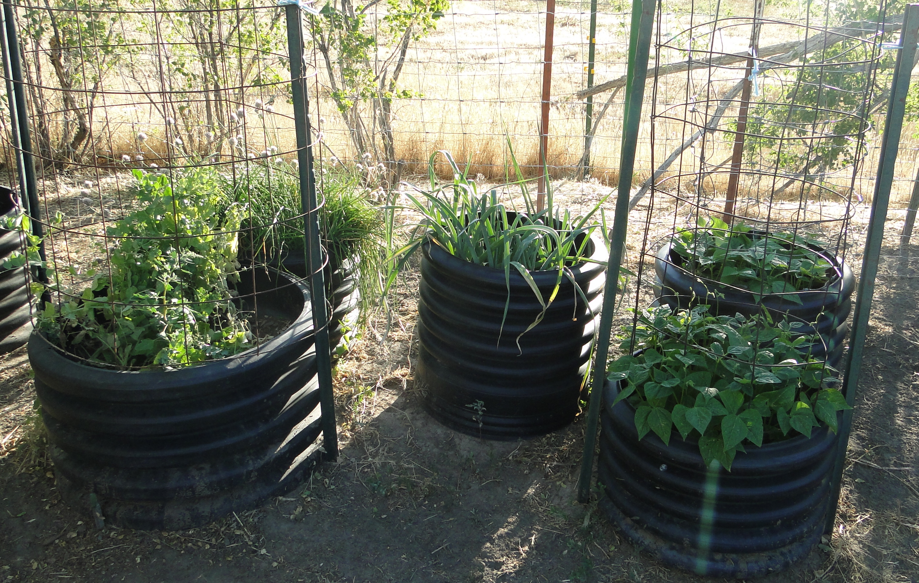 culverts for planting