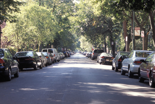 Cars Parked Along a Tree-Lined Street