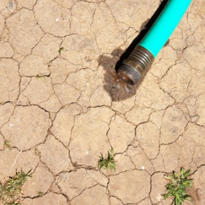 California's Drought Could Tip America Toward Economic And Social Turmoil