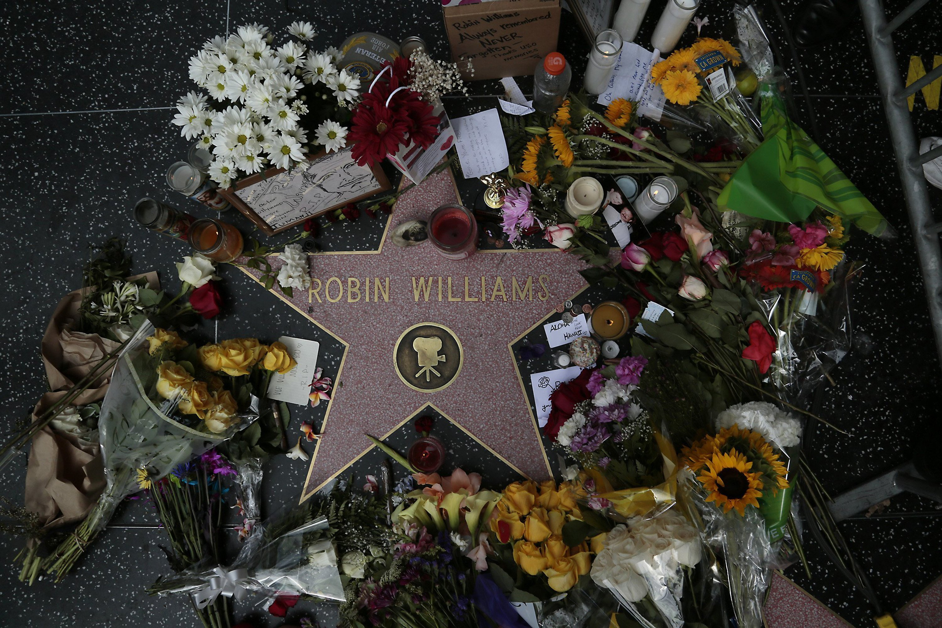 Robin Williams memorials