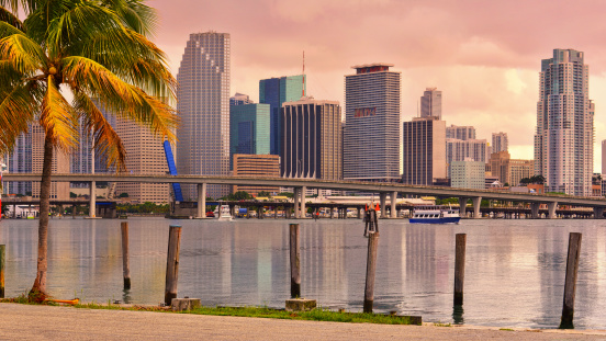 Golden Miami Skyline