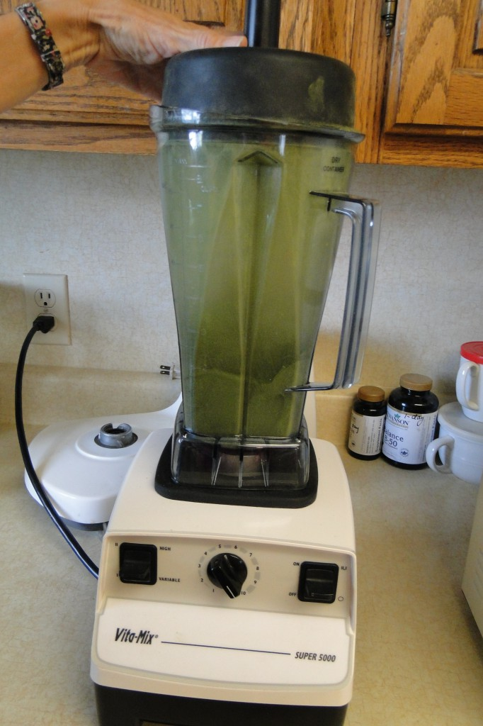 kale in a blender