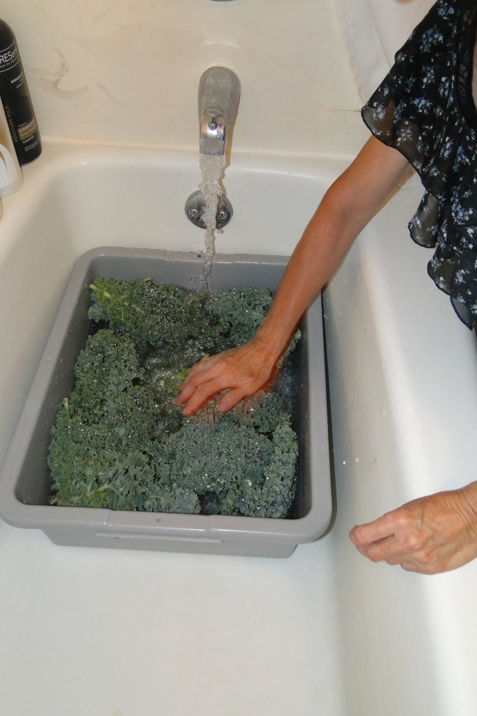 washing kale