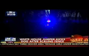 Video thumbnail for youtube video Dog catches a fence jumper at the White House - Personal Liberty