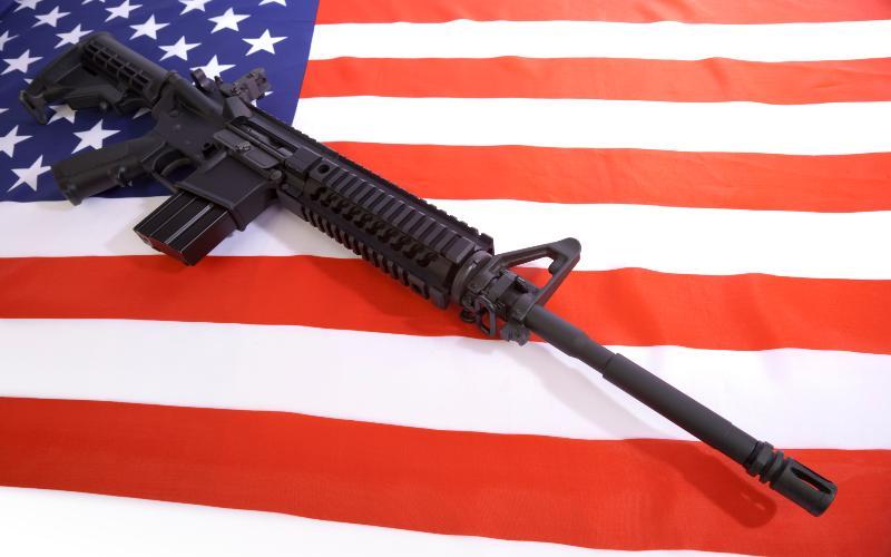gun100815