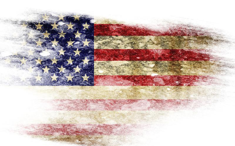 the issue of the burning of the flag of united states I am all for freedom of speech, but burning the flag in the united states of america should be a federal offense and a felony - davi | big hollywood.