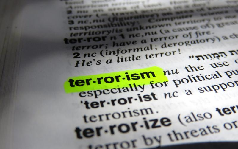 the four waves of modern terrorism David rapoport's concept of four waves of terrorism, from anarchist terrorism in the 1880s, through nationalist and marxist waves in the early and mid-twentieth century, to the present.