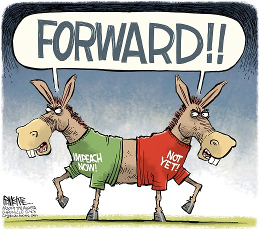 Image result for cartoons of democrats on impeachment